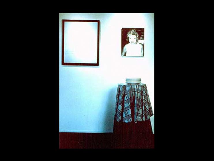 ah_installationslideshow_luna1